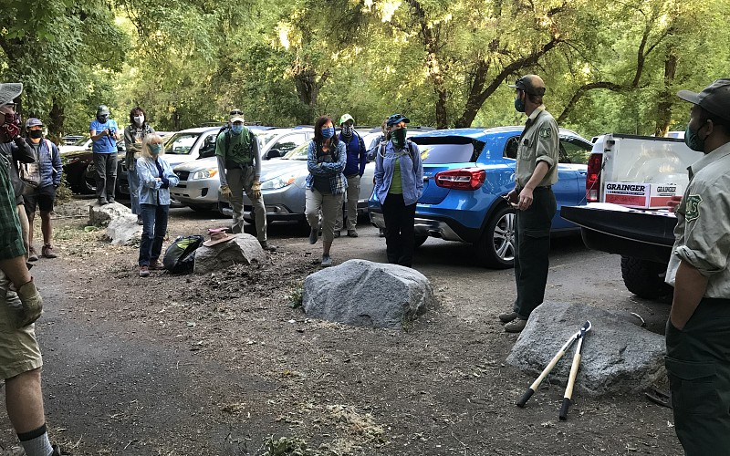 Wilderness Stewardship Project In Thaynes Canyon